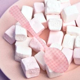 cucharita te vichy rosa sabre paris
